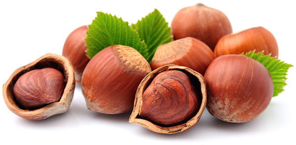 Rhora S Nut Farm And Nursery Are Niagara Finest Grower Of Trees Growing Seedlings Varieties Namely Heart Carpathian Walnut